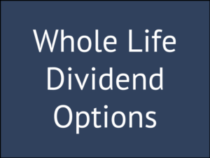 5 Dividend Options for Whole Life Insurance